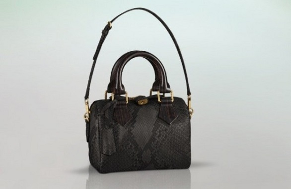 Louis Vuitton new bags