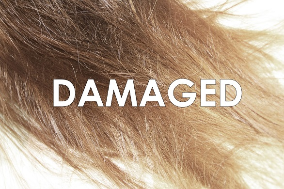 Damaged hair tips